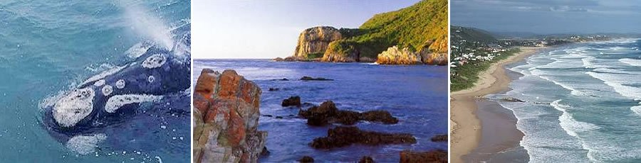 Garden Route Holidays