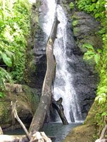 Grenada Holidays - amazing waterfalls