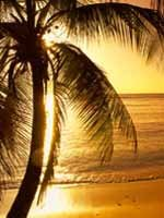 Trinidad & Tobago Holidays - romanic sunsets on beautiful beaches