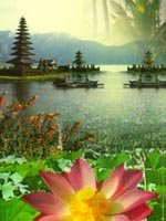Bali Holidays - picturesque scenery