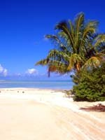 Tahiti Holidays - tropical beaches