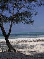 Zanzibar Holidays - romantic beaches