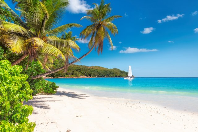 Dominican Republic Travel Advice >> Dominican Republic Travel Advice From Holidaysplease