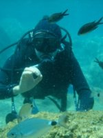 Scuba Diving In Trinidad & Tobago