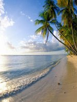 Trinidad & Tobago Beach